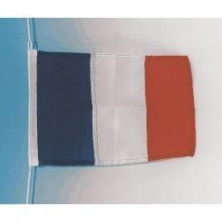 Courtesy Flags - New Image