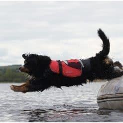 Crewsaver Pet Buoyancy Aid - Image