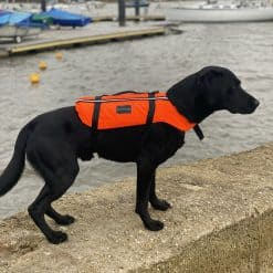 Typhoon Totland Dog Vest - Image
