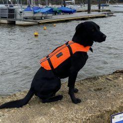 Typhoon Totland Dog Vest - Image
